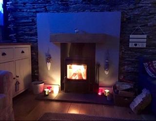 Cosy log burner 4 Evans
